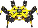 Our LynzMotion Hexapod Robot